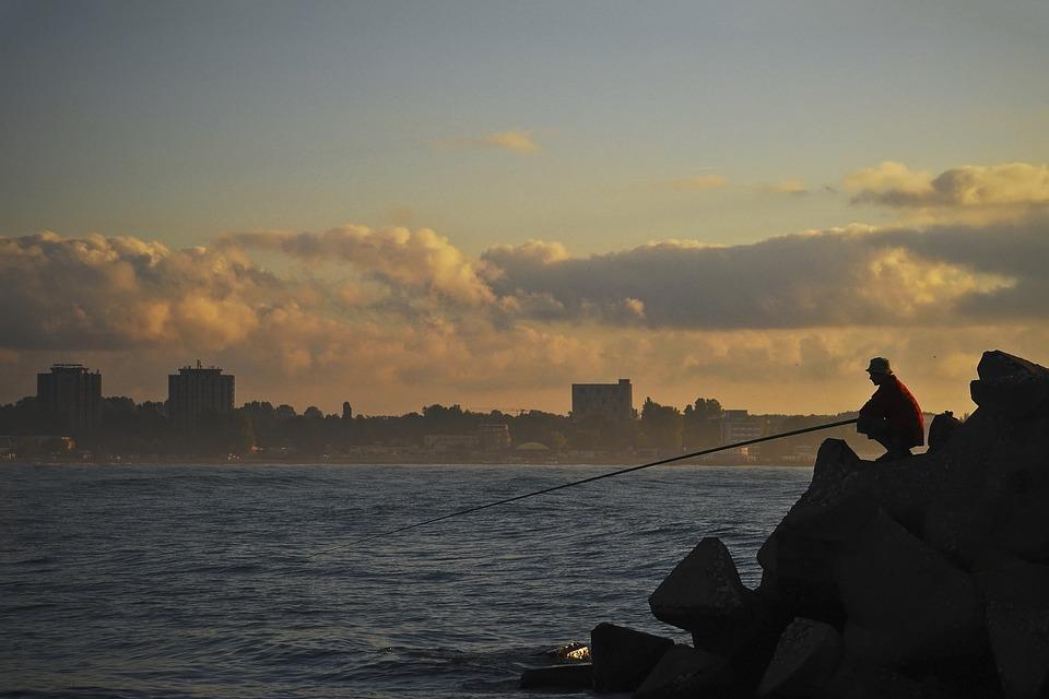 Fishing, Water, Nature, Fisherman, Summer, Man