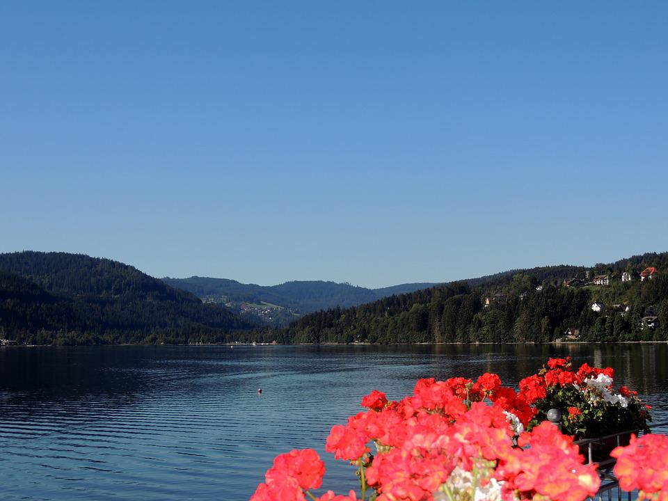 Summer, Water, Nature, Holiday, View, Mountain, Flowers