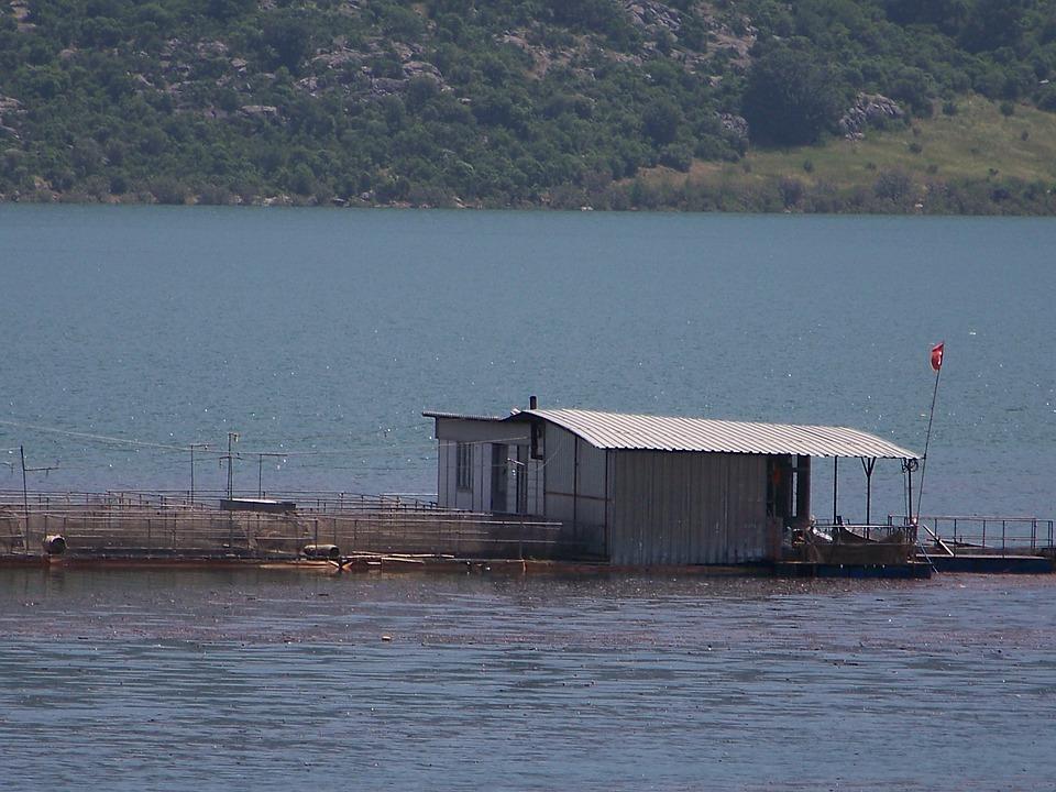 Adana, Dam, Water, Home