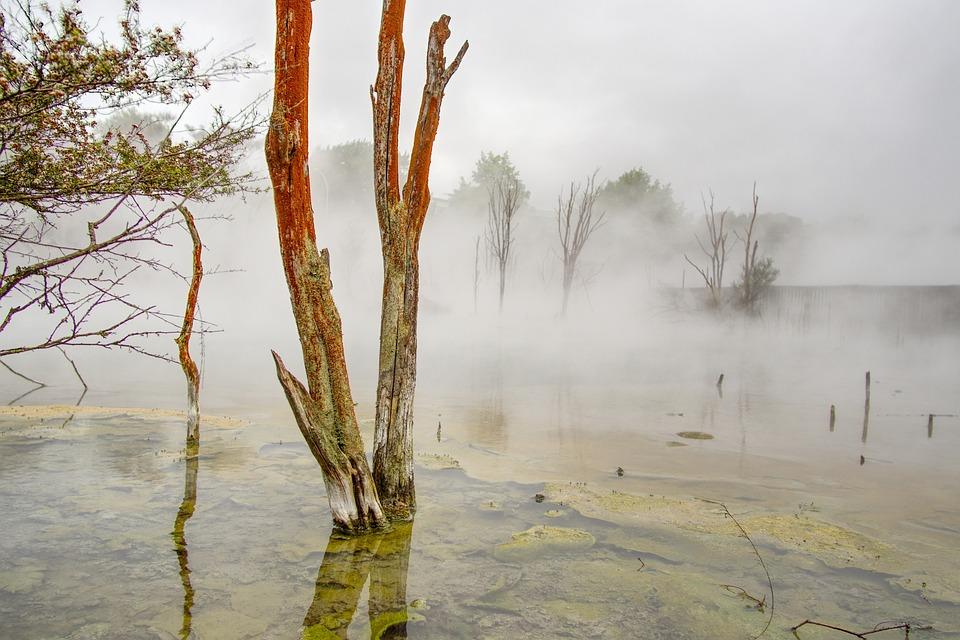 Rotorua, Water, Hot Spring, Geothermal, Peaceful