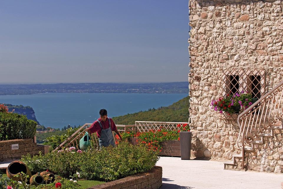 Lake, Garda, Gardening, Water