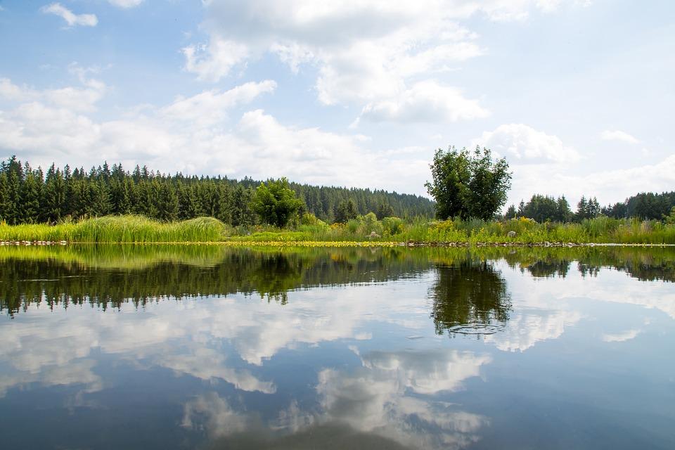 Nature, Lake, Landscape, Water, Mirroring