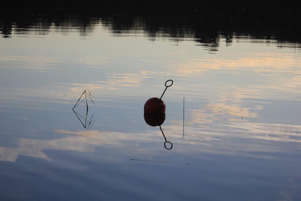 Buoy, Water, Lake, Loop, Sweden, Late-summer