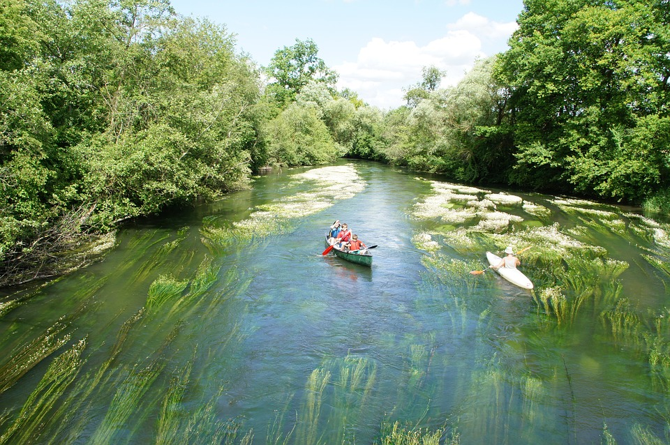 Canoeing, Tauber Casting, More, River, Water, Leisure