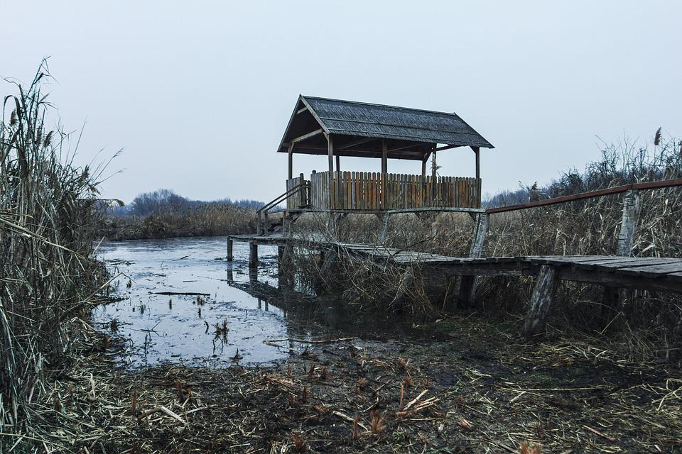 Swamp, Pier, Hut, Nature, Water, Landscape, Blue, Marsh