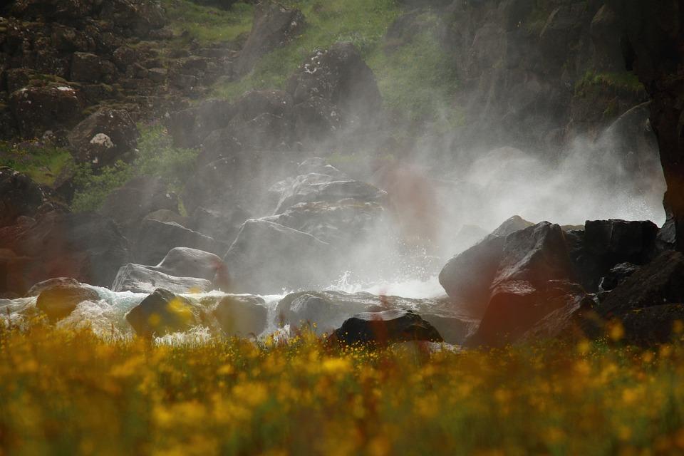 Water Mist, Waterfall, Flower Meadow, Iceland, Spring
