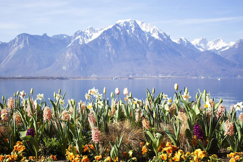 Montreux, Lake, Switzerland, Europe, Swiss, Water