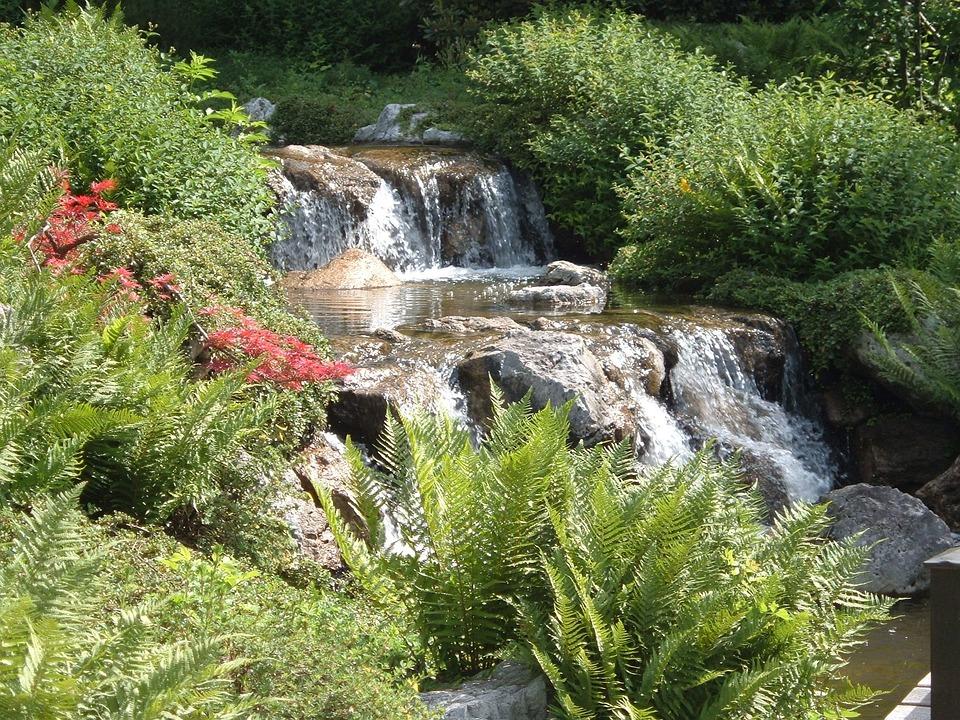 Mountain Stream, Water, Bach, Waterfall, Waters, Flow