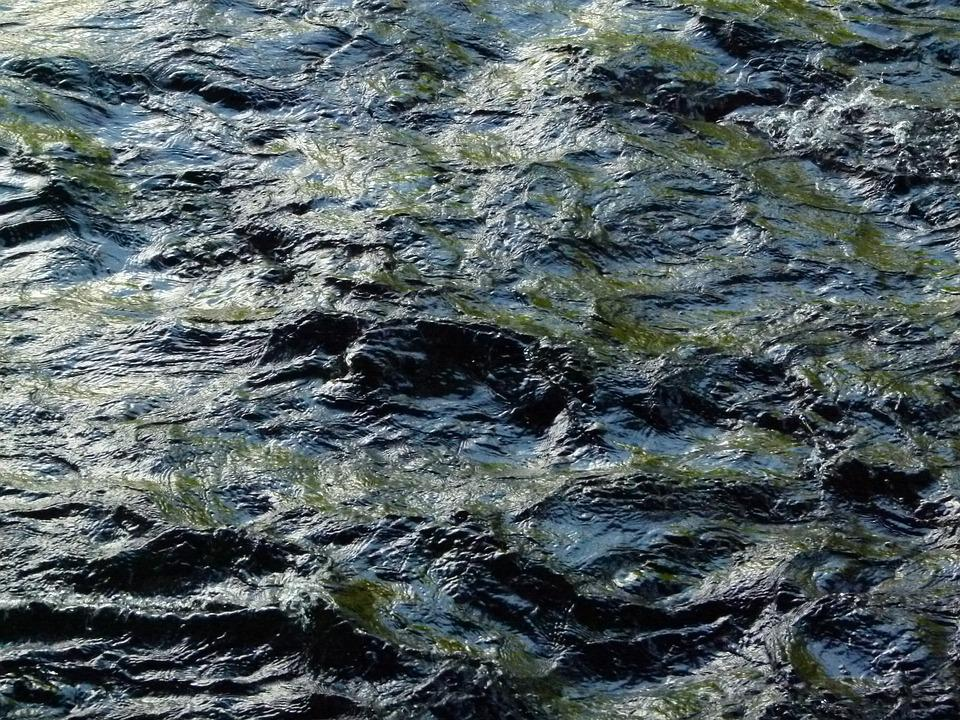 Water, Stream, Motion, Flow, Wet, Nature, Natural