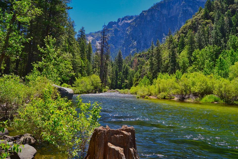 Nature, Landscape, Bach, Bank, Yosemite, Water, Usa