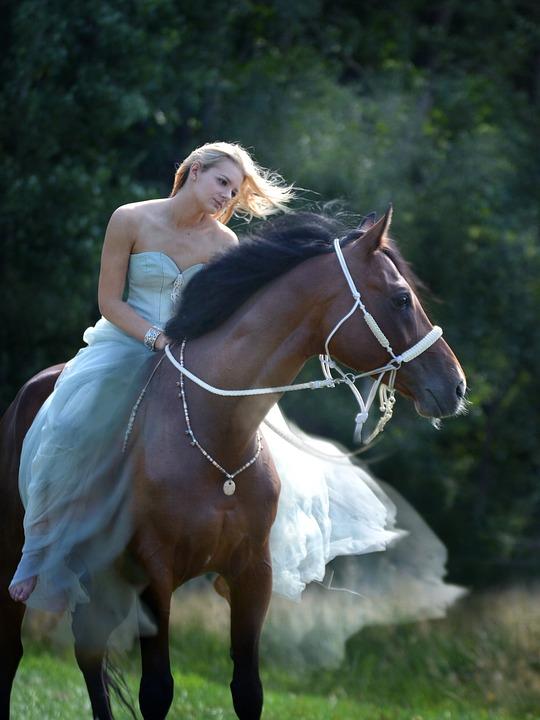 Nature, Water, Swimming, Summer, Girl, Beauty, Horse
