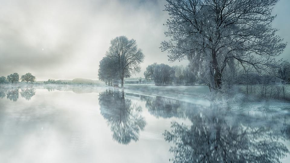 Nature, Tree, Fog, Waters, Snow, Lake, Water, Mirroring