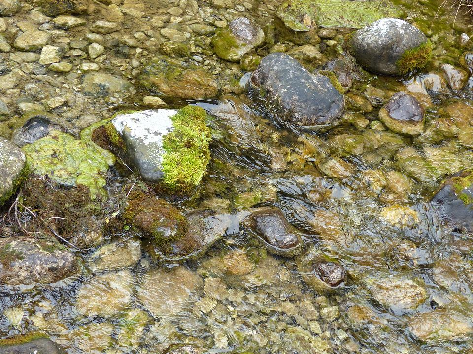 Natural Water, Bach, Stones, Flow, Water, Nature