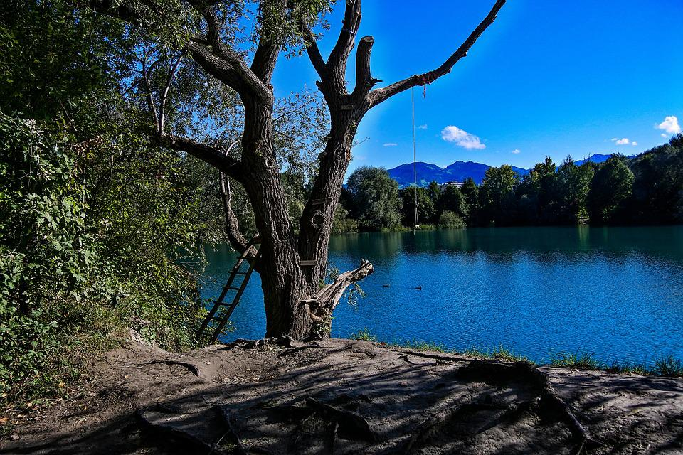 Lake, Tree, Waters, Water, Nature, Summer, Rest