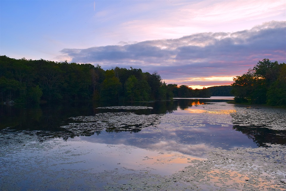 Lake, Sunset, Park, Forest, Water, Sky, Nature