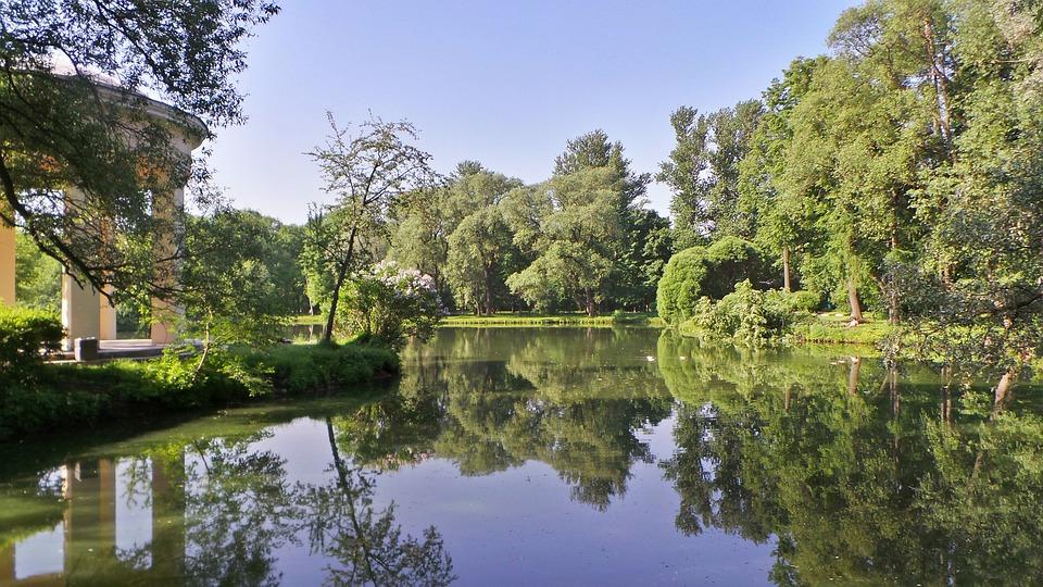 Park, Parks, Trees, Pond, Sky, Water, Landscape, Tree