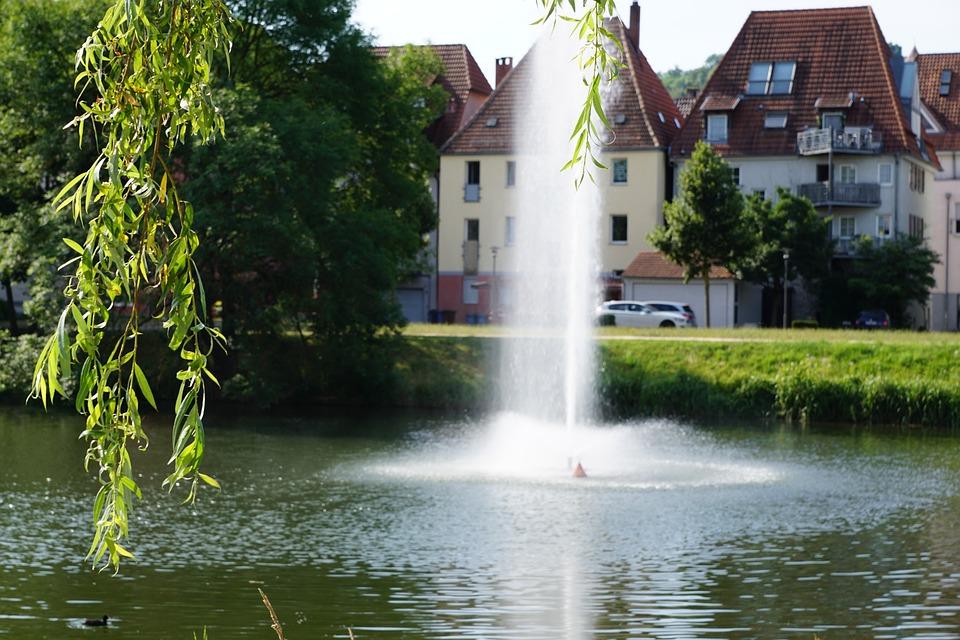 Danube, River, Plant, Water, Reed, Fontane