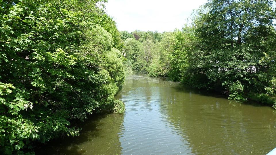 River, Water, Atmosphere, Trees, Saale