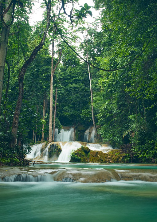 Waterfall, Water, Forest, Trees, Rocks, Nature