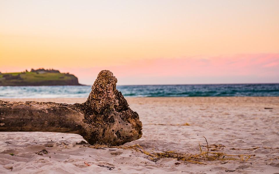 Beach, Sunset, Drift Wood, Earth-day, Ocean, Sea, Water
