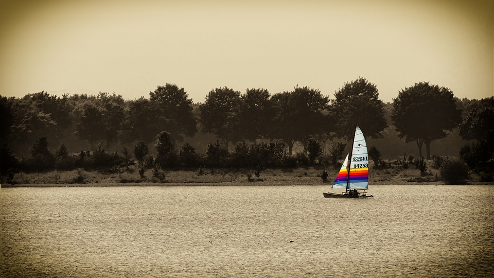 Sail, Lake, Water, Wind, Sepia, Sailing Boat, Boot