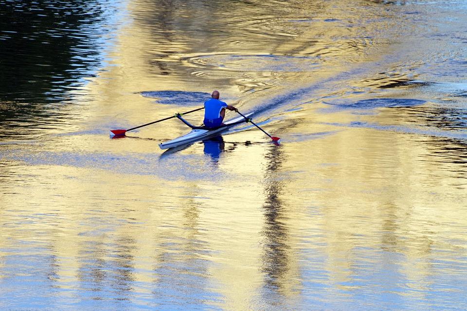 Rowing, Tiber, River, Sport, Water Sports, Rome, Bridge
