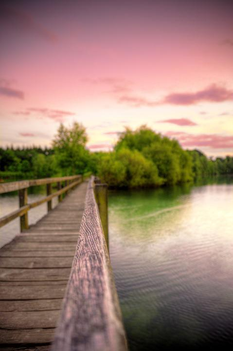 Bridge, Sunset, Water, Lake, Nature, Trees, Wood, Scene