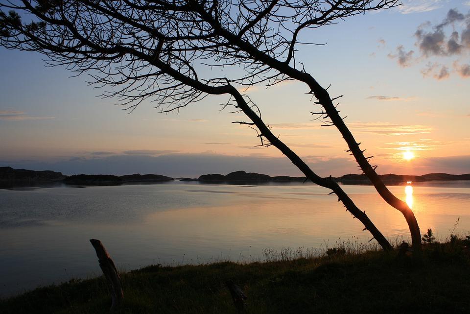 Tree, Sunset, Norway, Landscape, Fjord, Lake, Water