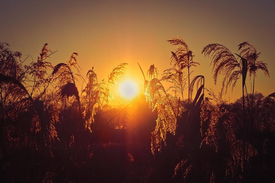 Landscape, Lake, Nature, Water, Rest, Sky, Sunset, Mood