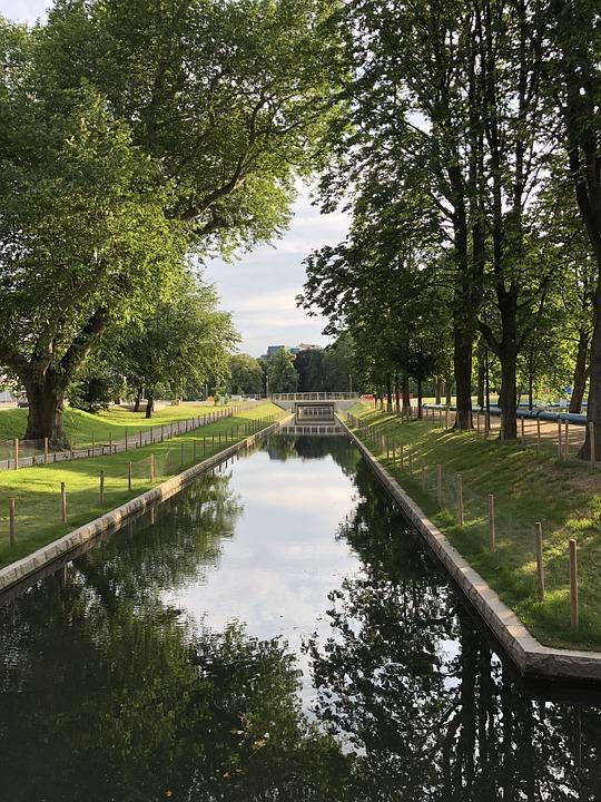 Düsseldorf, River, Trees, Bridge, Architecture, Water