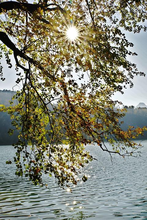Tyrol, Austria, Nature, Autumn, Sun, Rest, Water
