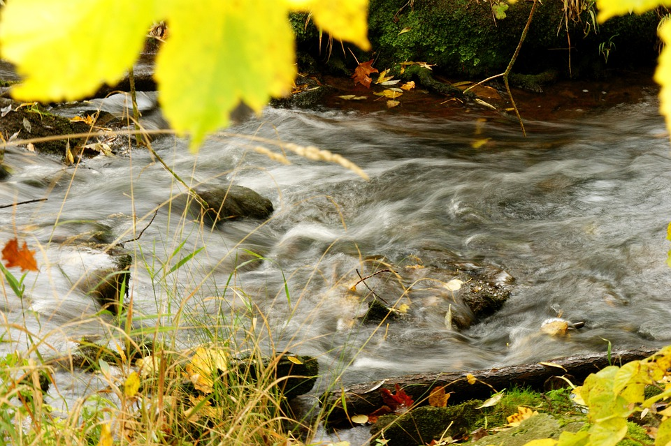 River, Great Brook, Nature, Landscape, Water, Waters