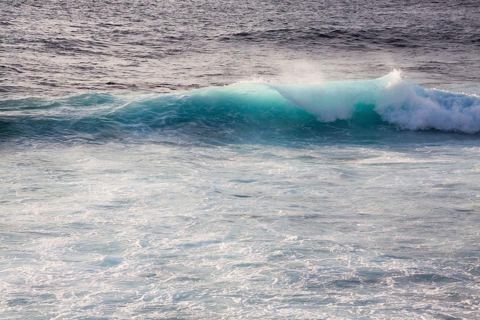 Wave, Ocean, Flood, Sea, Water, Spray, Holiday, Surf