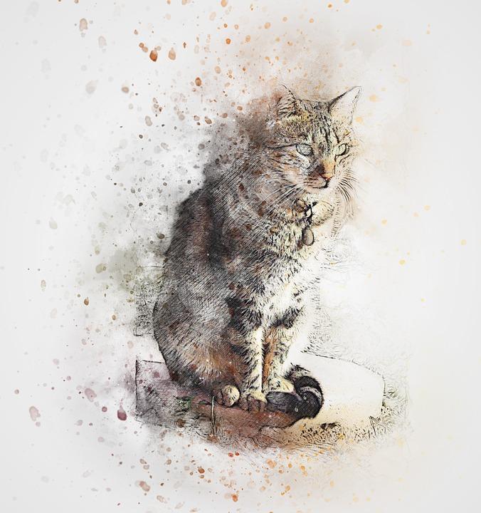 Cat, Pet, Art, Abstract, Watercolor, Vintage, Kitten