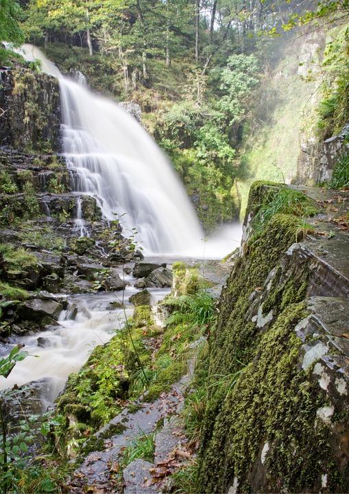 Waterfall, Water, Forest, Cascade, Stream, Nature