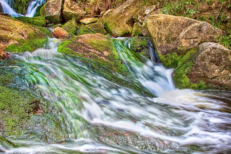 Bach, Water, Waterfall, Current, Forest, Nature