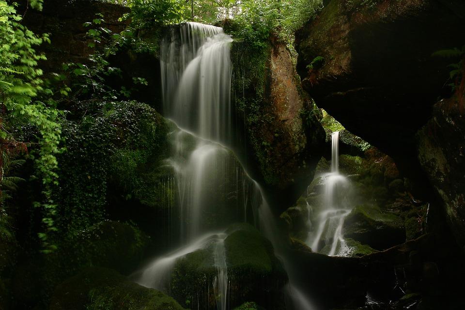 Waterfall, Creek, Forest, Trees, Rocks, Mossy, Moss