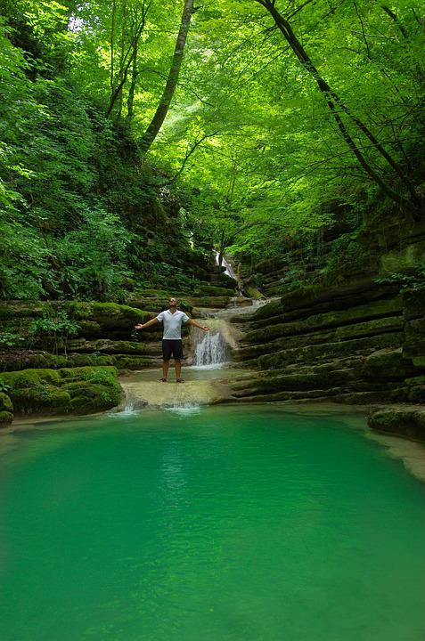 Lake, Forest, Waterfall, Sinop, Trees, Green, Water