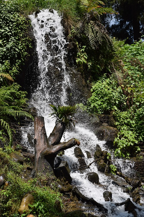Waterfall, Water, Green, River, Nature, Landscape