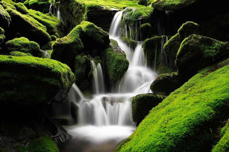 Waterfall, Moss, Korea, Mountain, Valley, Green, Forest