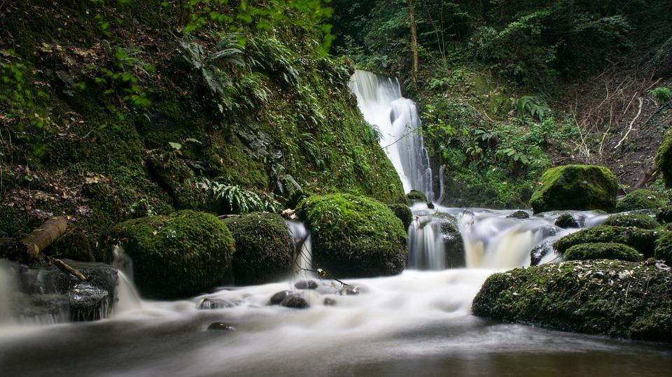 Waterfall, Stream, Water, Nature, Green, Grass