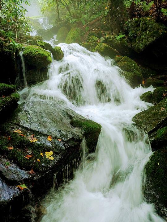 Nature, Valley, Moss, Waterfall, Abstract, Summer