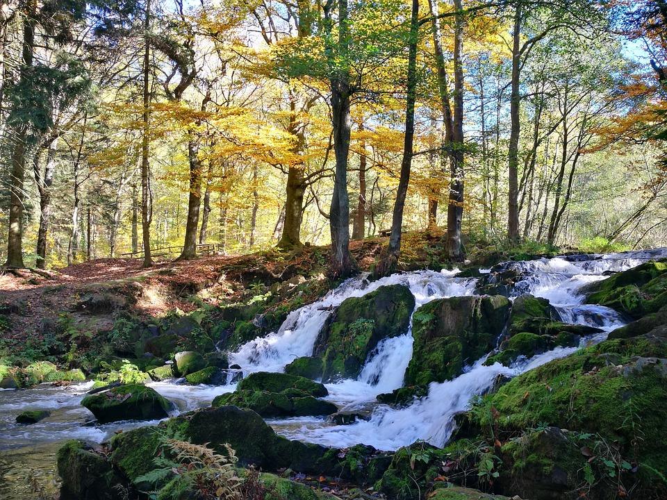 Nature, Landscape, Waters, Wood, Autumn, Waterfall