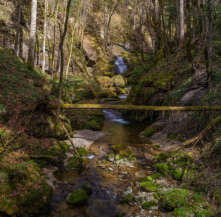 Nature, Waters, River, Waterfall, Moss, Water