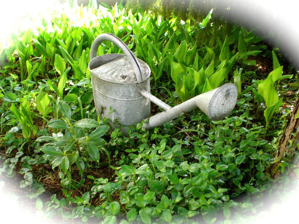 Watering Can, Casting, Irrigation, Pot, Decoration