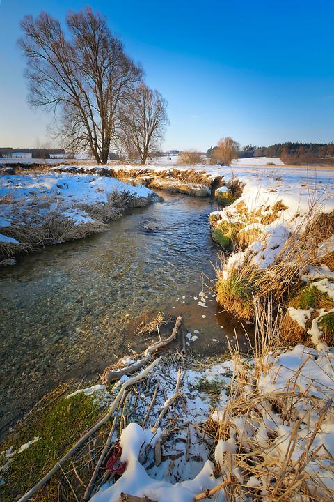Nature, Tree, Snow, Winter, Waters, Bach, Water