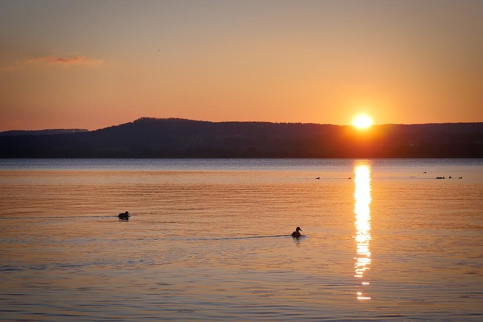 Sunset, Dawn, Waters, Dusk, Sun, Landscape, Ducks, Lake