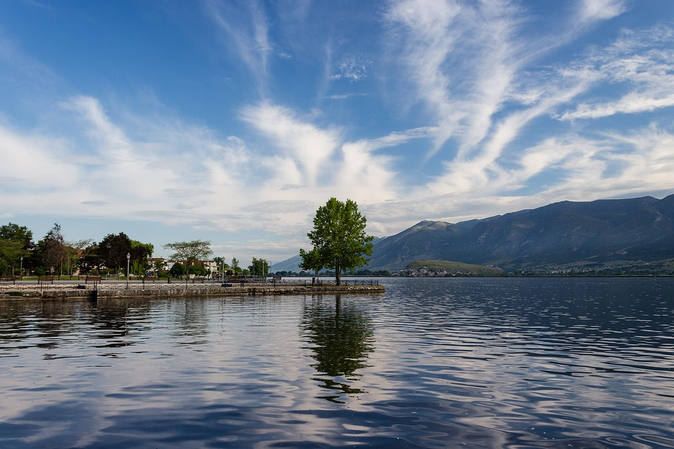 Tree, Lake, Water, Nature, Landscape, Clouds, Waters