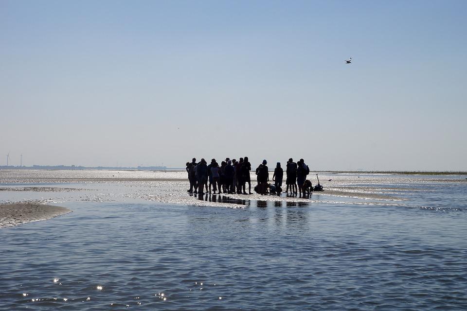 Wadden Sea, Watt Hike, Intertidal Zone, Mudflat Hiking