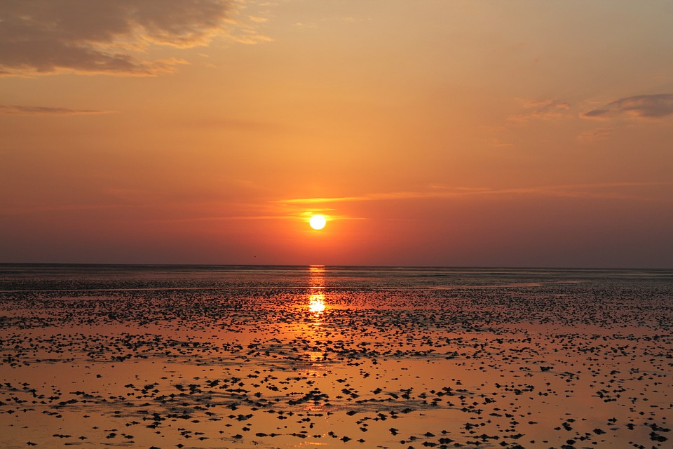 Watts, Wadden Sea, North Sea, Ebb, Sunset, Evening Sky